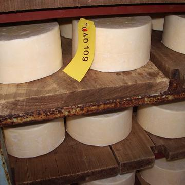 quickes extra mature the cheese shed