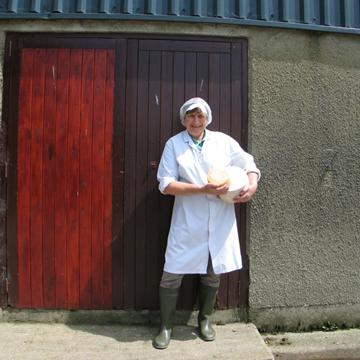 meldon the cheese shed ogleshield washed rind ogleshield cheese uk