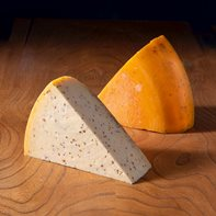 Cornish Gouda with Cumin